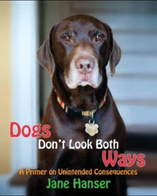 Dogs Don't Look Both Ways front cover